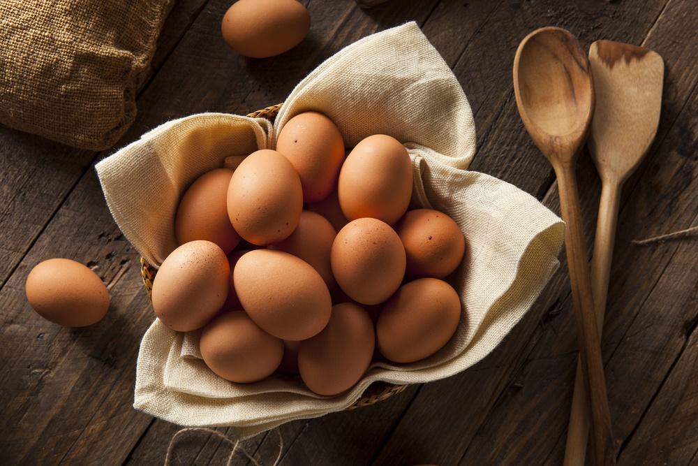 Les œufs et tous leurssecrets